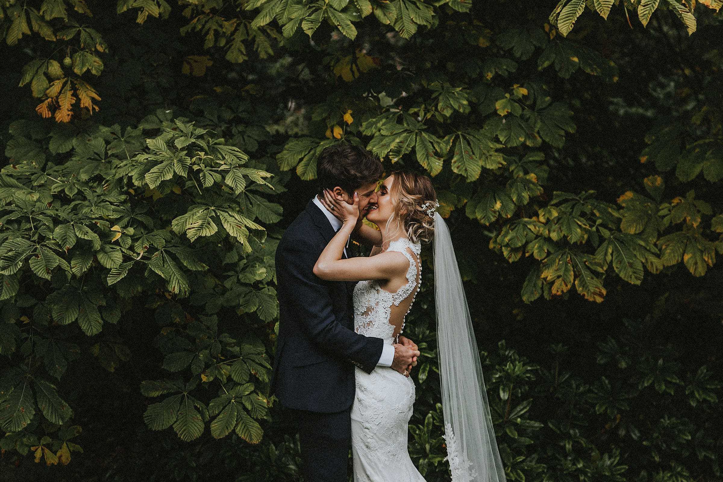 north east wedding photographer andy turner photography bride and groom kissing in front of tree hexham winter gardens